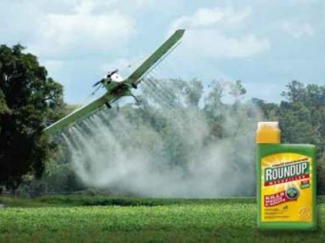 Roundup_Monsanto-14721-640-480-90-c